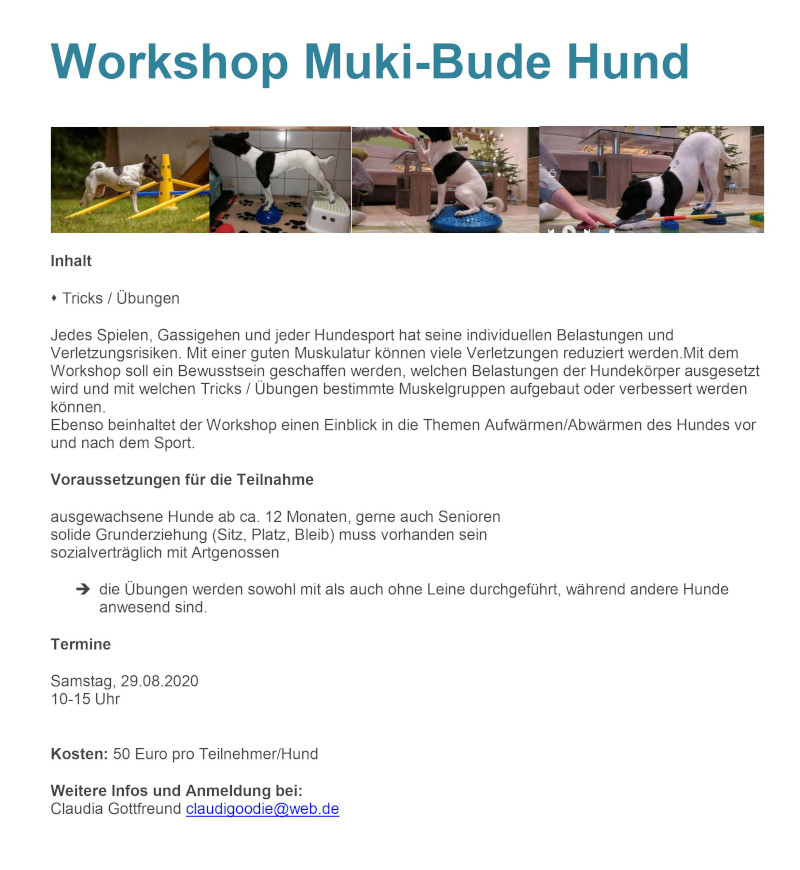 Mukibude2
